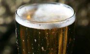beer-paring-dinner