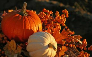 Thanksgiving Specials at the Mercersburg Inn