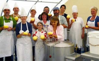 Cheesemaking Class with Three Shepherd's Cheese