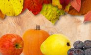 Autumn leaves, an apple, a pumpkin, a peal and grapes